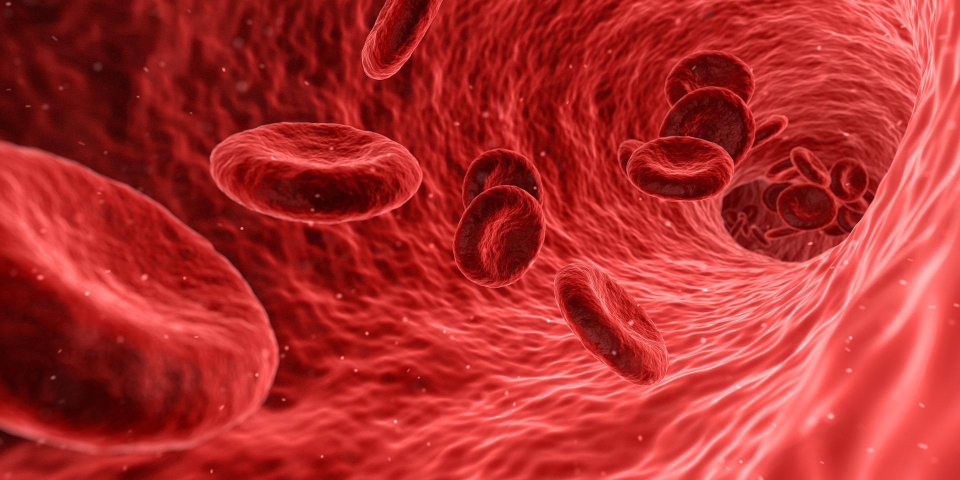 Krążysz, więc jesteś: dlaczego chcesz dbać o krążenie krwi