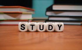 Co powinieneś studiować?