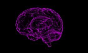 Choroba Alzheimera a zachowanie.