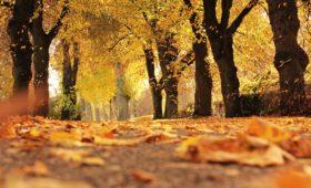 Jak się ubrać na jesień?
